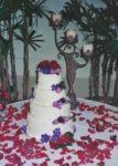 Wedding-Classic-04